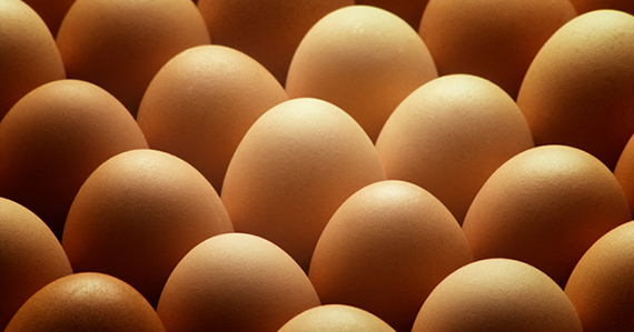 Whats wrong with eggs
